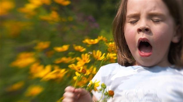 Une fillette éternue en tenant des fleurs jaunes dans la main.