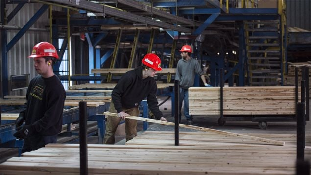 United States duties on lumber to cost jobs, profit in Canada