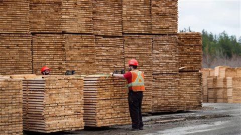 Les droits compensateurs visent à contrebalancer ce que les États-Unis considèrent comme des subventions illégales au Canada alors que les tarifs antidumping constituent une réplique à des prix de vente qui seraient inférieurs à ceux du marché. Photo : La Presse canadienne/Darren Calabrese