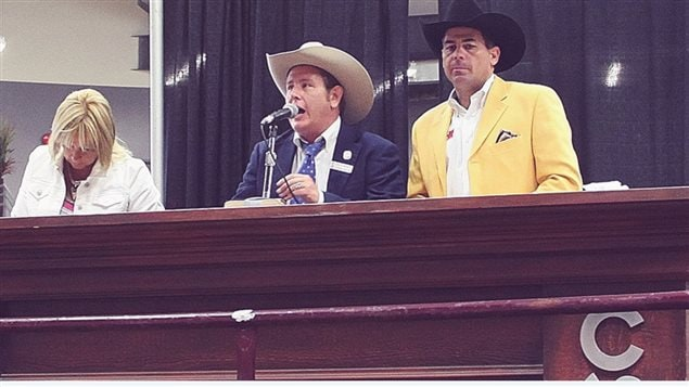 Livestock auctions are an important aspect of western life, and the Stampede hosts an international competition to determine an auctioneering champion.