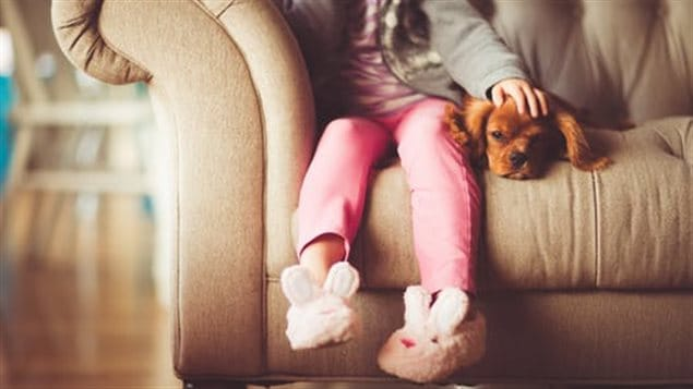 Children should be kept away from animals treated for pests until the product used dries.
