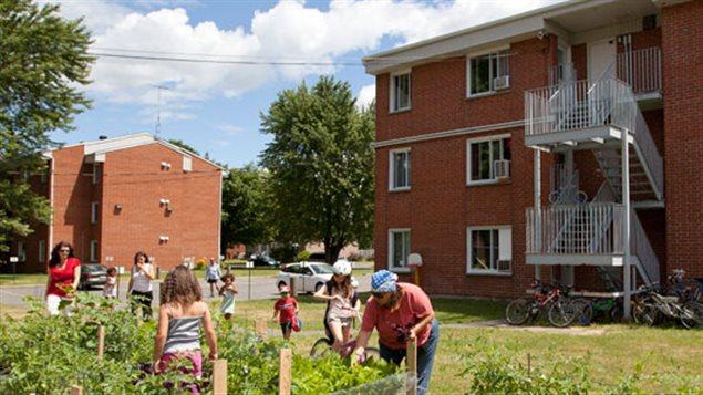 Repensar el equilibrio entre espacios urbanos y verdes es una de las claves de la ciudad del futuro.
