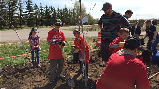 Scouts and volunteers plant about 200,000 trees every year across Canada.