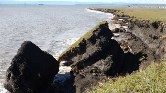 Erosion near the Pauline Cove settlement on Herschel Island.. Wave action eats away at the permafrost causing the land above to collapse; a process known as slumping.