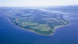 L'île d'Orléans profiterait au Québec d'un microclimat