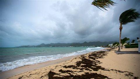 La plage Marigot de la Baie-Nettlé à Saint-Martin aux Antilles (Caraïbes), est balayée par des vents violents annonçant l'arrivée de l'ouragan Irma, le 5 septembre 2017 afp.com/Lionel CHAMOISEAU