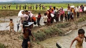 Un groupe de réfugiés Rohingyas fuient le Myanmar. Photo : Reuters / Mohammad Ponir Hossain