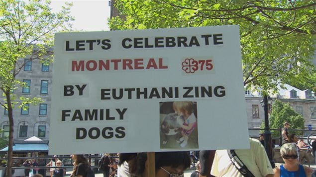 An estimated 1,500 people gathered in Montreal last year to protest a Montreal bylaw that targets certain breeds of dogs. This week they received some support from Montreal's coroner.