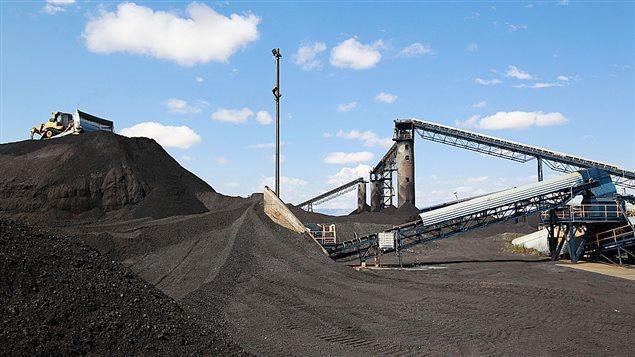 Un grand bouteur déplace des tonnes de charbon au Savage Energy Terminal à Price, dans l'Utah. Photo : Getty Images/George Frey