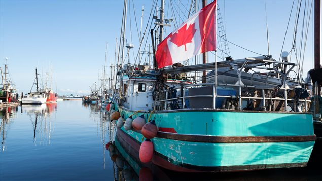 Rebuilding fish stocks is critical to preserving Canada's fishing industry which employs more than 79,000 people, says Robert Rangeley.