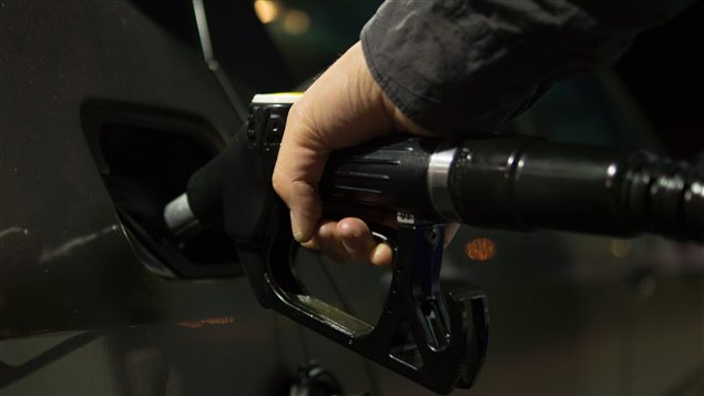 Consumption of fossil fuels in Canada should peak in two years and then flatten, predicts the National Energy Board.