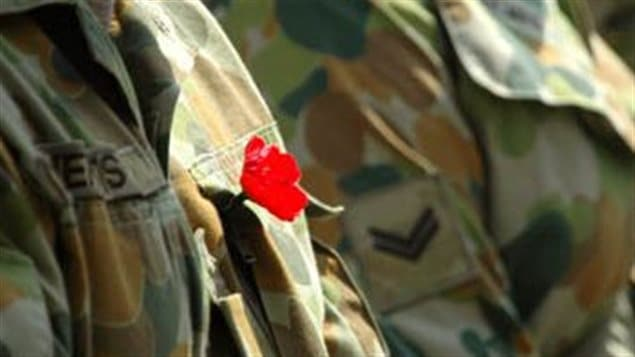 The Australian Remembrance poppy tends to be a slightly more realistic rendition, while the New Zealand poppy more closely resembles the British one.