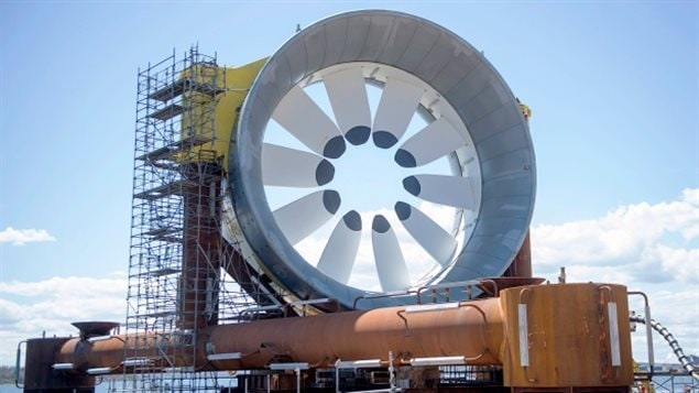 Cape Sharp Tidal Venture's plans are to place two, five-storey high turbines in the Minas Passage to harness the energy of the massive Bay of Fundy tides. The company is a joint partnership between Halifax-based energy services company Emera Inc. and OpenHydro, a subsidiary of DCNS, a French conglomerate that specializes in naval defence and energy.