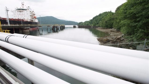 A ship receives its load of crude oil from the Kinder Morgan Trans Mountain expansion project's Westridge loading dock in Burnaby, B.C.