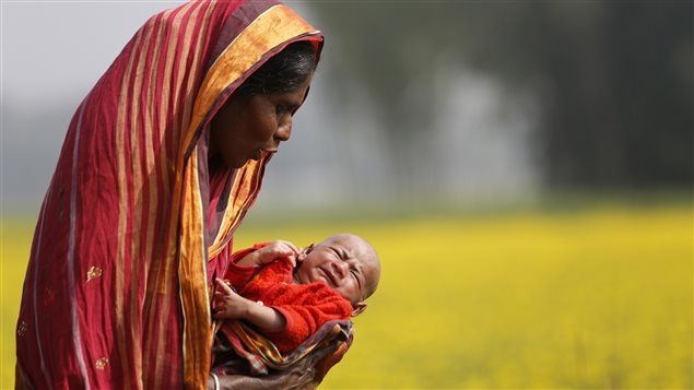 Monowara holds her 22-day-old grandson Arafat, as she walks through a mustard field on the outskirts of Dhaka January 22, 2014.