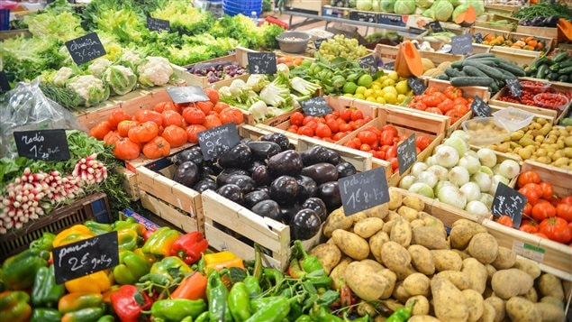Newcomers to Canada are much more likely to prepare food from fresh ingredients, according to the study.