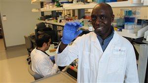 Dr.Momar Ndao, scientist at RI-MUHC, and professor at McGill University Montreal