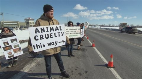 bout 50 protesters gathered along a stretch of highway east of Ottawa in March, where a lion was shot dead after it escaped its enclosure at the Papanack Zoo a week earlier. Animal rights activists say their movement is growing.
