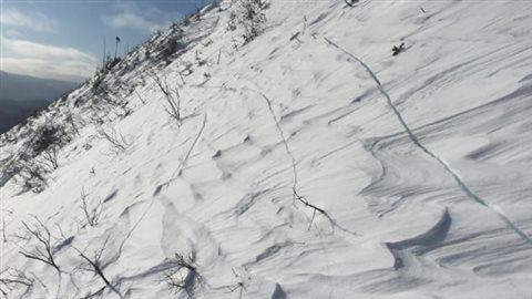 Fissures de propagation qui peuvent être un signe d'avalanche Photo : Alexandre Robert