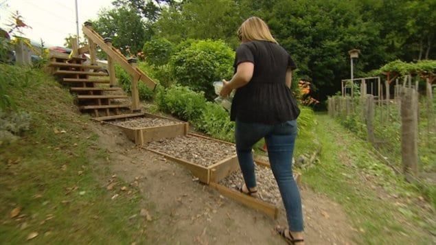 A woman walks on a homemade staircase in a small park in Etobicoke  The homemade stairs embarrassed the city over how quickly and inexpensively the man built the stairs, and spurred them to action..at a much lower cost than originally estimated.