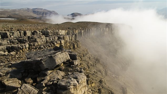 A misty morning at the researchers' study location above Tremblay Sound, northern Baffin Island (Photo Tim Gibson)