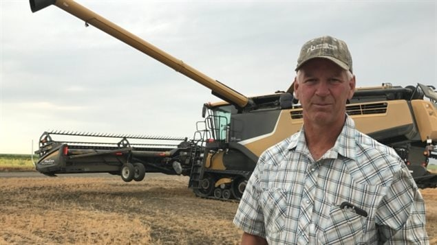 Aug 2017 Saskatchewan farmer Bill Aulie, says the drought has meant real shortages of hay for livestock feed, He and many other farmers are seeking hay from elsewhere. Ranchers elsewhere found up to 200 of their cattle dead from dehydration.