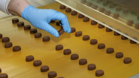Des pastilles de chocolat