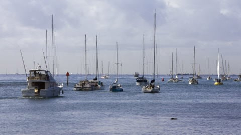 Des bateaux quittent le port d'Ala Moana, à Honolulu, en réaction à l'avis de tsunami émis par les autorités.