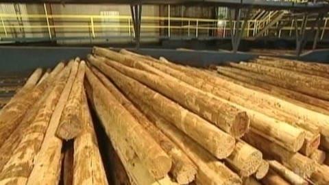 Du bois dans une scierie