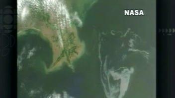 nappe de pétrole dans le golfe du Mexique