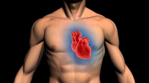 Le coeur d'un homme