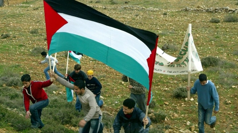 Des jeunes Palestiniens du village de Beit Surik portent un drapeau palestinien (archives)