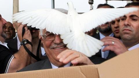Le président de l'Autorité palestinienne, Mahmoud Abbas, a reçu la visite d'une des colombes relâchées lors d'une cérémonie au Brésil où il a posé la première pierre d'une ambassade palestinienne.