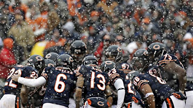 Bears de Chicago