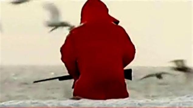 Un chasseur de phoque