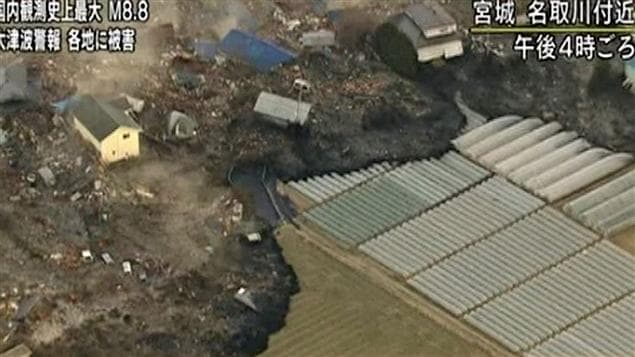 Des serres sont détruites par le passage de grands volumes d'eau.