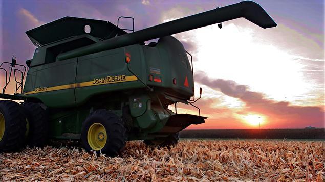 Le maïs est l'une des plus importantes sources de biomasse au pays.