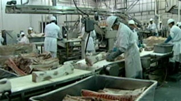 Une usine d'abattoir de porc