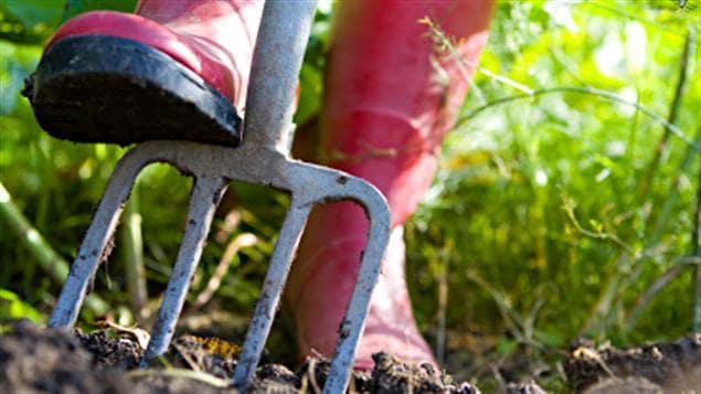 Jardiner avec une fourche