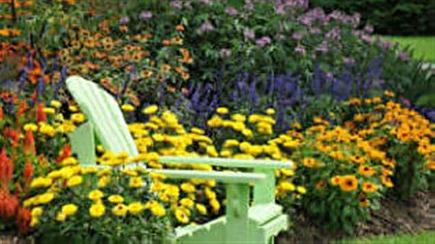 Les plantes exceptionnelles du Jardin Daniel A. Séguin