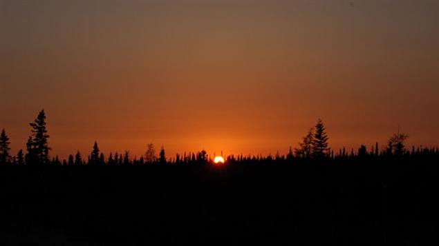 Levée de soleil sur la forêt boréale à Attawapiskat
