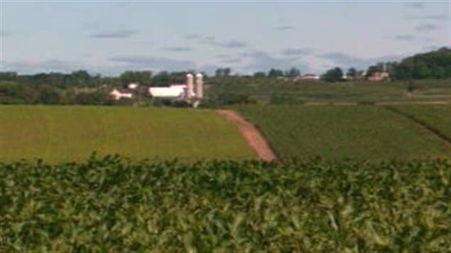 terres-agricoles