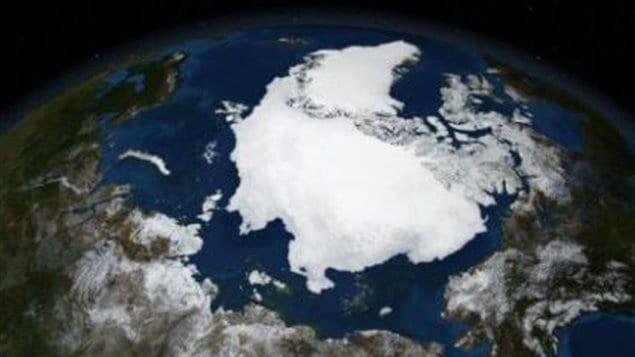 La glace arctique