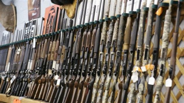 Des fusils de chasse
