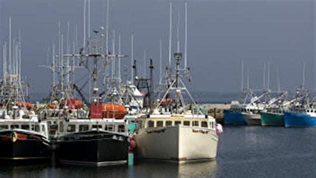Bâteaux de pêche en Nouvelle-Écosse
