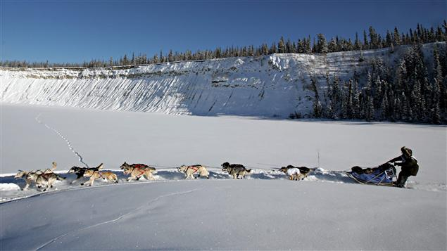 Yukon Quest 2009