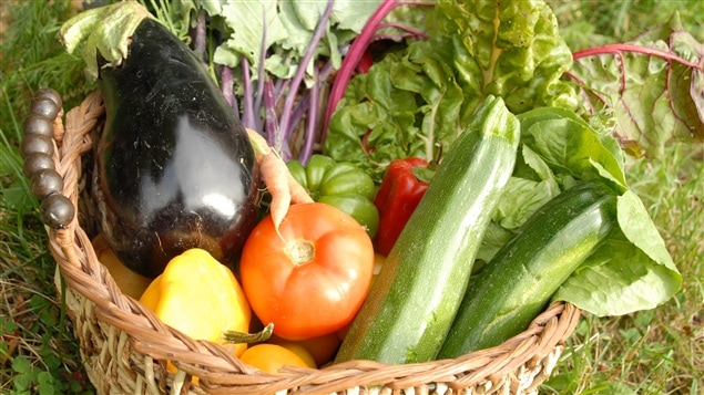 Un panier de légumes biologiques
