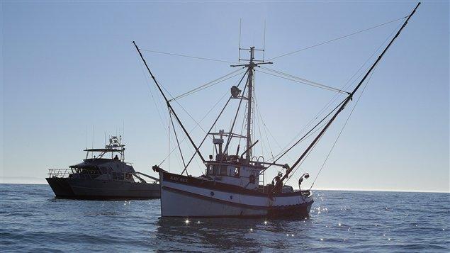 Un bateau de pêcheurs de crabes