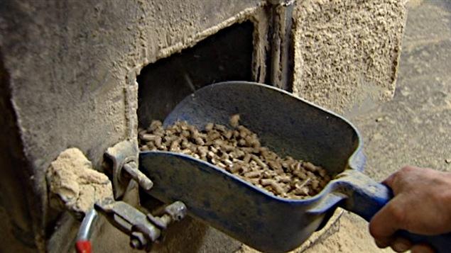 L'usine Lauzon Bois Energétique produit des granules de bois franc.