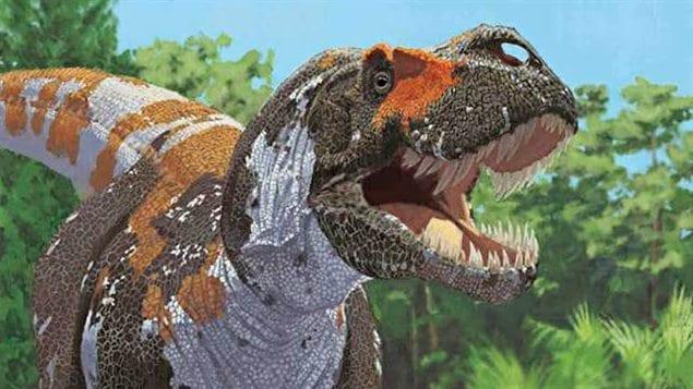 Reconstitution d'un tyrannosaure